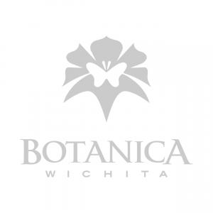 Client Logos_Botanica